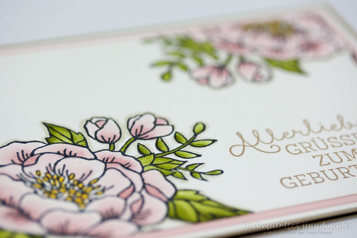Stampin' Blends kolorieren
